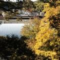 Photos: 清龍寺より