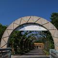 山下公園_横浜 D3941