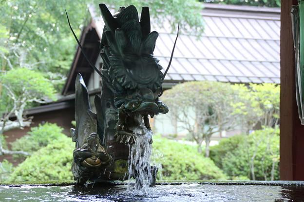 冨士浅間神社 D5006