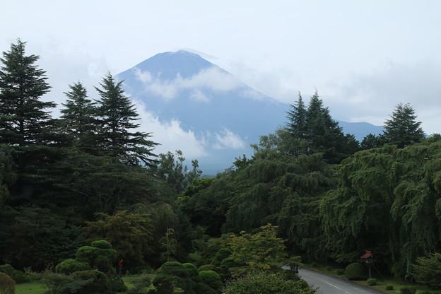 富士山 D5069