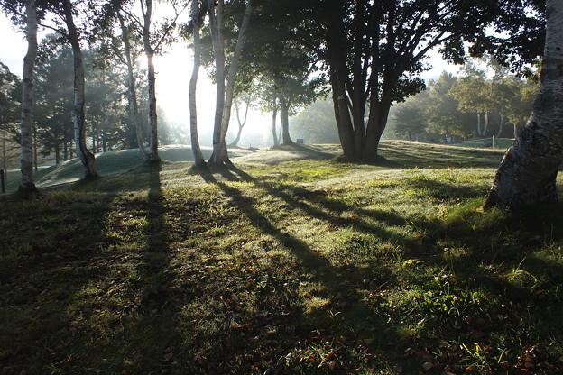 早朝のゴルフ場 F0477