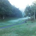 Photos: 早朝のゴルフ場 F0479