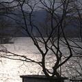 十和田湖 D5765