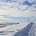 写真: 冬の散歩道