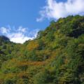 Photos: 微かな秋
