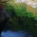 Photos: 秋の淵