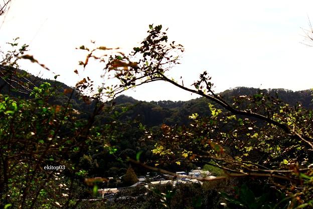 名も知らぬ小落の秋