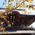 初冬の建長寺にて