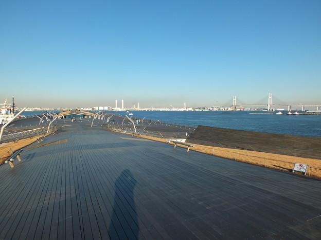 写真: 大桟橋