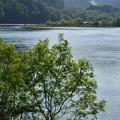 川面の煌めき 眺望