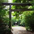 写真: 月ヶ岡神社