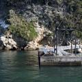 写真: 猿島桟橋