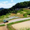 美咲町・小山の棚田