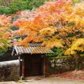 旧閑谷学校の紅葉