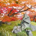 岡山後楽園の紅葉 NO.2