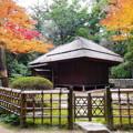 岡山後楽園の紅葉 NO.5