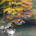 岡山後楽園の紅葉 NO.9