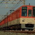 阪神電車8000系8230