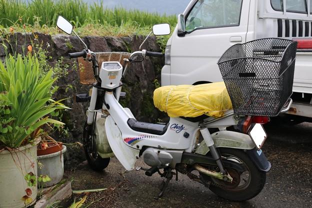 写真: 本田技研工業 ホンダシャリィ50