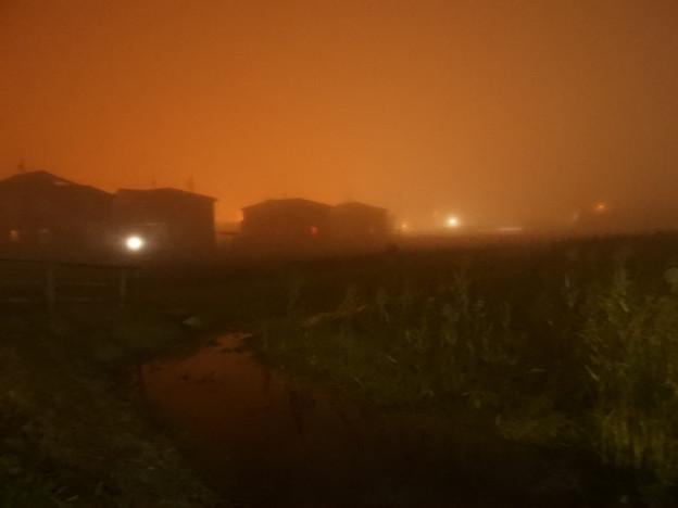 写真: 霧の夜 (3)