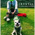 写真: 20110523_09
