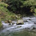 河の流れ…