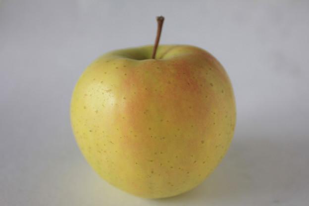 リンゴ(トキ)