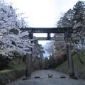 Photos: 吉野神宮(奈良県吉野町吉野山)一の鳥居