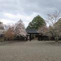 Photos: 吉野神宮(奈良県吉野町吉野山)境内
