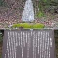 写真: 芭蕉句碑(吉野町吉野山)