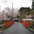 写真: 大橋(吉野町吉野山)