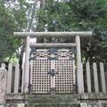 如意輪寺(吉野町吉野山)長慶天皇皇子 世泰親王墓