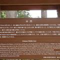 写真: 高野山壇上伽藍(高野町)中門