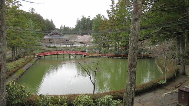 高野山壇上伽藍(高野町)蓮池
