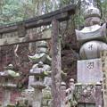 Photos: 高野山金剛峯寺 奥の院(高野町)岡山津山森家墓所