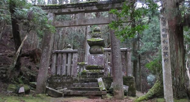 高野山金剛峯寺 奥の院(高野町)前田利治墓
