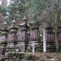 Photos: 高野山金剛峯寺 奥の院(高野町)信州諏訪家墓所