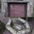 Photos: 高野山金剛峯寺 奥の院(高野町)大師の腰かけ石