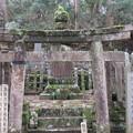 高野山金剛峯寺 奥の院(高野町)筑後久留米有馬家墓所