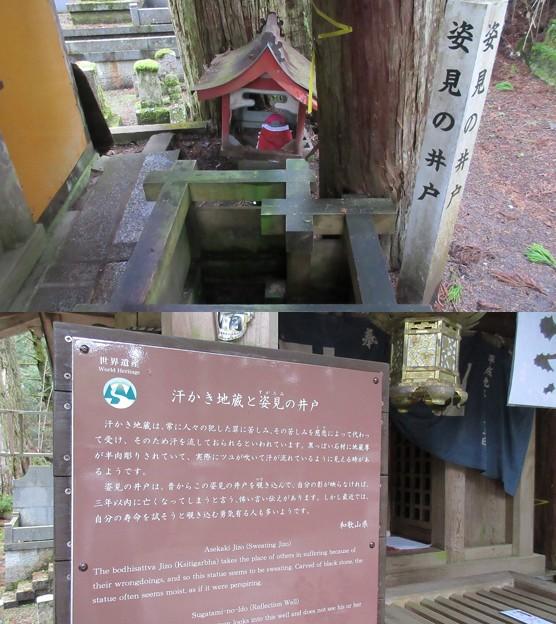 高野山金剛峯寺 奥の院(高野町)姿見の井戸