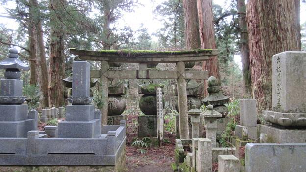 高野山金剛峯寺 奥の院(高野町)信州高遠鳥居家墓所