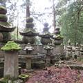 Photos: 高野山金剛峯寺 奥の院(高野町)但馬出石仙石家墓所
