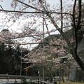 17.04.12.鈴鹿峠(三重県亀山市~滋賀県甲賀市)