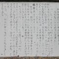 羊山公園(秩父市)牧水の滝
