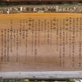 Photos: 秩父神社(埼玉県)
