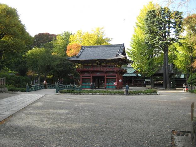 根津神社(文京区根津)神橋・楼門