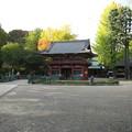 Photos: 根津神社(文京区根津)神橋・楼門