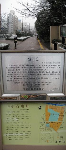 文京区春日(東京都)冨坂
