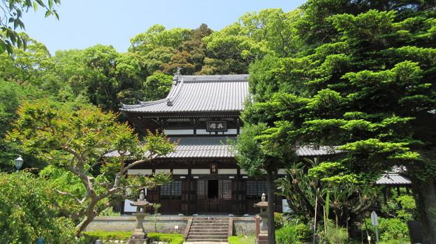 清見寺(清水区)仏殿