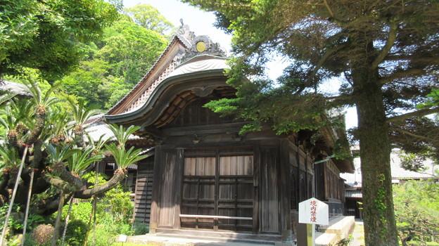 清見寺(清水区)大玄関